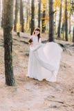 华美的长的白色礼服的美丽的无辜的年轻深色的新娘在森林 图库摄影