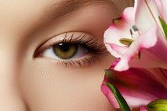 华美的年轻模型,与新桃红色flowe的美丽的妇女眼睛 免版税库存图片