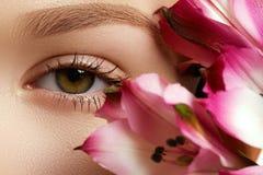 华美的年轻模型,与新桃红色flowe的美丽的妇女眼睛 库存图片