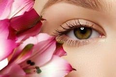 华美的年轻模型,与新桃红色flowe的美丽的妇女眼睛 免版税库存照片