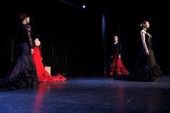 华美的flamencas 免版税库存照片