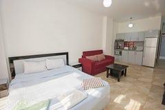 单室公寓客厅展示家的室内设计 免版税库存图片