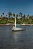 单桅三角帆船白色 库存图片