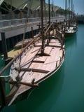 单桅三角帆船科威特 库存照片