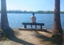 单独人坐在湖前面的长凳在太阳和棕榈树-图象下 免版税库存图片
