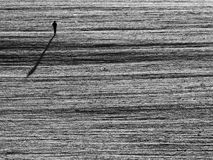 单独人步行通过多雪的领域 库存图片