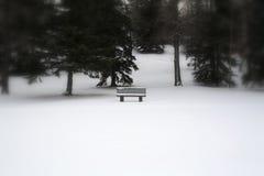 单独公园长椅 免版税库存照片