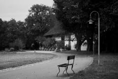 单独和平安 图库摄影