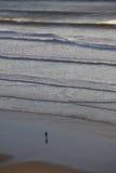 单独在一个风雨如磐的海滩 免版税库存照片