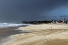 单独在拍照片的一个有风海滩 免版税库存图片