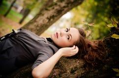 单独在森林里 图库摄影