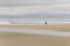单独在海滩 免版税图库摄影