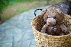 单独在篮子的熊玩具 库存图片