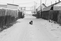 单独在街道 免版税库存照片