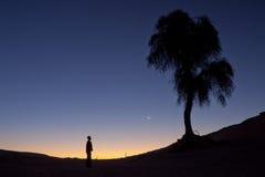 单独坐在树下的一个人的剪影 免版税库存照片