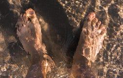 单独年轻人立场的顶视图的脚在海滩背景的水中 免版税图库摄影