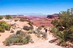 单独步行在Canyonlands犹他的人 图库摄影
