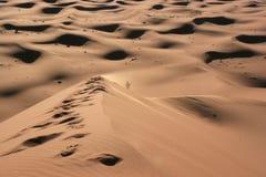 单独沙漠 免版税库存图片