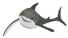 单独滑稽的鲨鱼游泳在海 免版税图库摄影