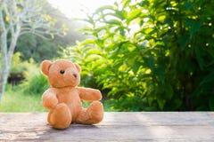 单独玩具熊玩具在木头在前面灰色背景中 免版税库存图片