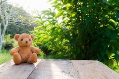 单独玩具熊玩具在木头在前面灰色背景中 图库摄影