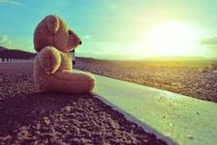 单独的玩具熊 免版税图库摄影