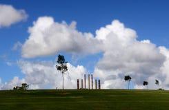 单独站立唯一的树 免版税库存图片