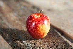 单独红色苹果 免版税库存照片