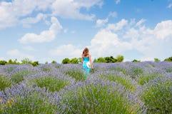 单独走在lavander领域的美丽的妇女 免版税图库摄影