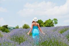 单独走在lavander领域的美丽的妇女 免版税库存照片