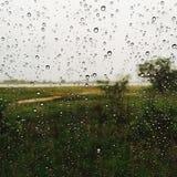 单独雨黑绿色水 库存照片