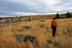 单独treeking在小山的女孩在秋天 免版税库存照片