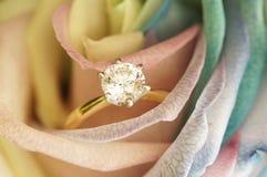单粒宝石圆环在上升了 免版税图库摄影