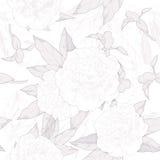 单色无缝的样式白色牡丹和芽在白色背景 也corel凹道例证向量 库存图片