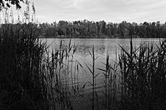 单色湖 免版税库存照片