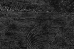 单色纹理或背景的树桩木结构 库存图片