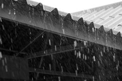 单色雨击中了屋顶 库存图片