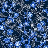 单调新鲜的蓝色植物的花在庭院手拉的b里 向量例证
