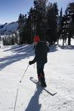 单音滑雪 图库摄影