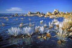 单音秀丽的湖 免版税库存图片