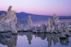 单音黎明的湖 库存图片