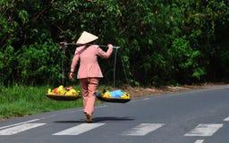 卖在农村路的妇女果子在Vinhlong,越南 免版税库存图片