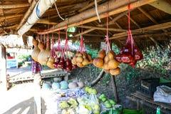 卖在地方菜商店的匏在Sa Mae长的山在清莱,泰国 免版税库存照片