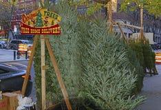 卖在曼哈顿街道上的供营商圣诞树  免版税库存图片