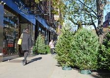 卖在曼哈顿街道上的供营商圣诞树  免版税库存照片