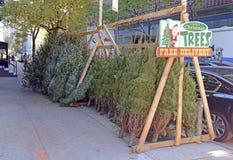 卖在曼哈顿街道上的供营商圣诞树  图库摄影