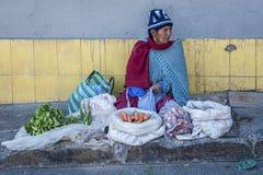 卖在波托西,玻利维亚街道的未认出的玻利维亚的妇女菜  库存照片