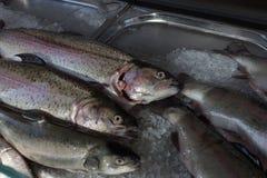 卖在街市上的鱼 免版税库存照片