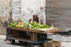 卖在街道上的人果子在哈瓦那古巴 库存图片