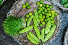卖新鲜的普通话的亚洲农夫市场在会安市,越南 橙色和绿色 图库摄影